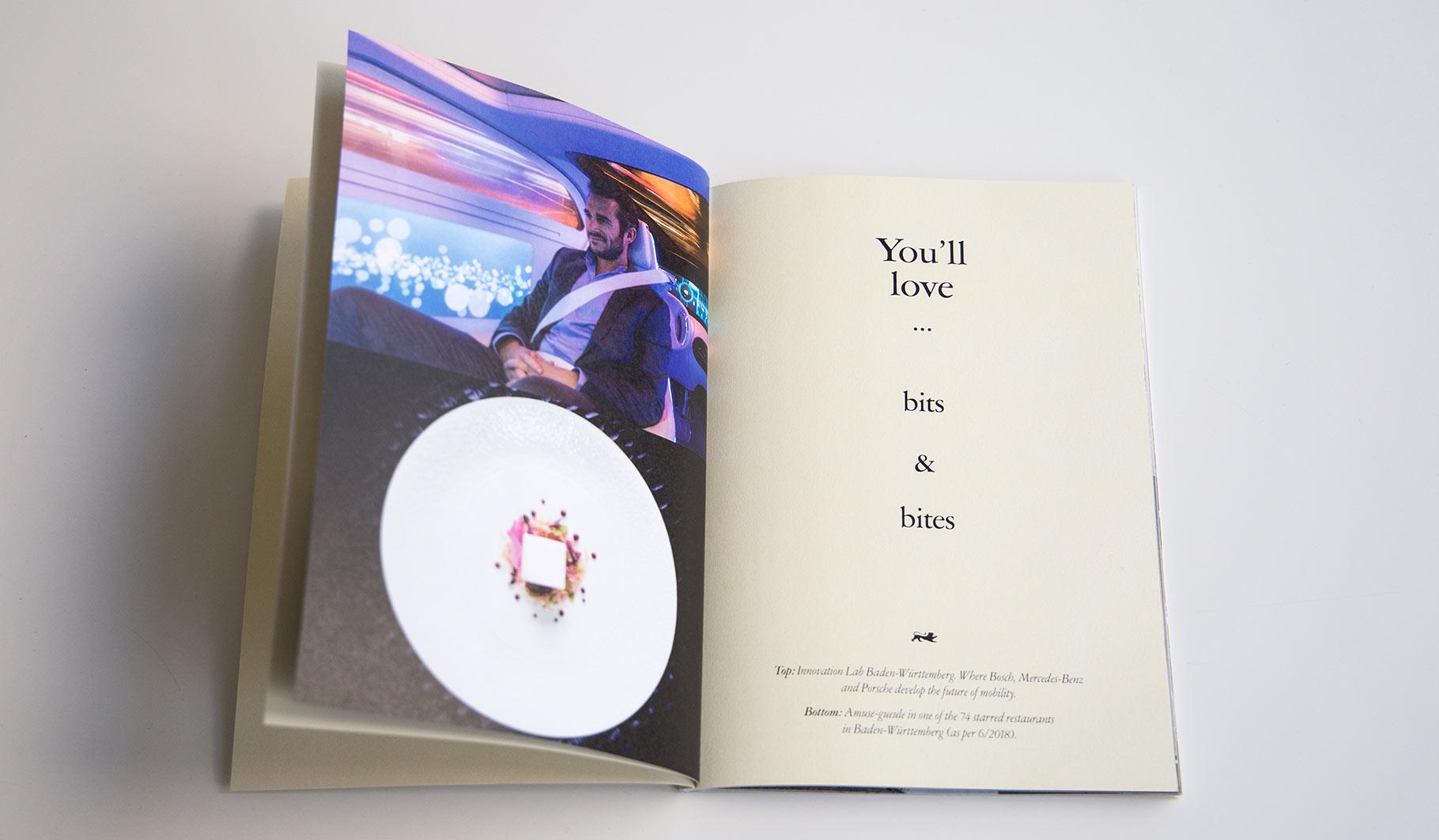 Aufgeschlagene Broschüre. Auf einer Seite das Bild eines Mannes im Innovation Lab Baden-Württemberg. Darunter das Bild eines Desserts von Amuse-gueule. Auf der anderen Seite die Headline 'You'll love ... bits & bites'.