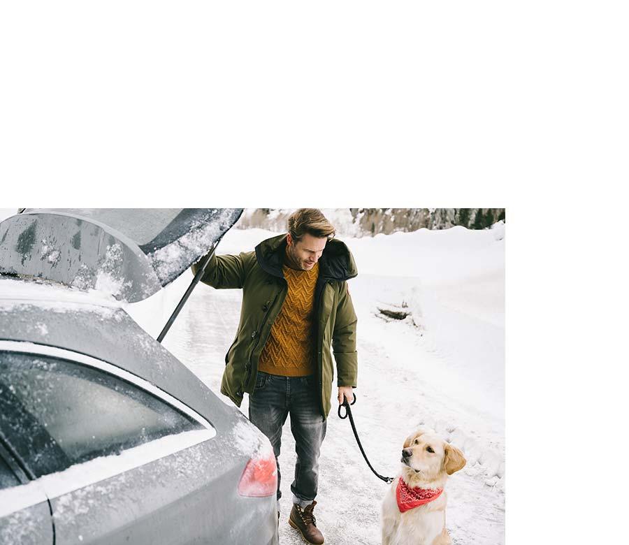 Mann mit Hund an seinem Auto